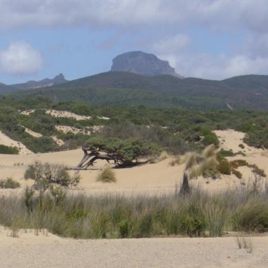 Località Piscinas - Sardegna